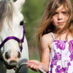 Horse Camps And Riding Lessons #1604