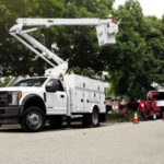 Fire Mitigation – Tree Care – Holiday Decorating Business #1611