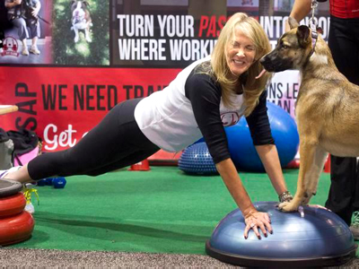 Dog Health And Fitness